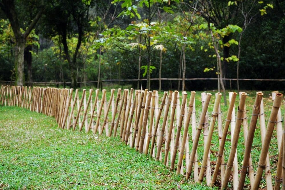 bamboo garden fence on budget