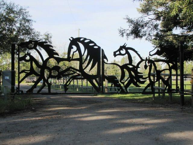 the decorative horse fence locked