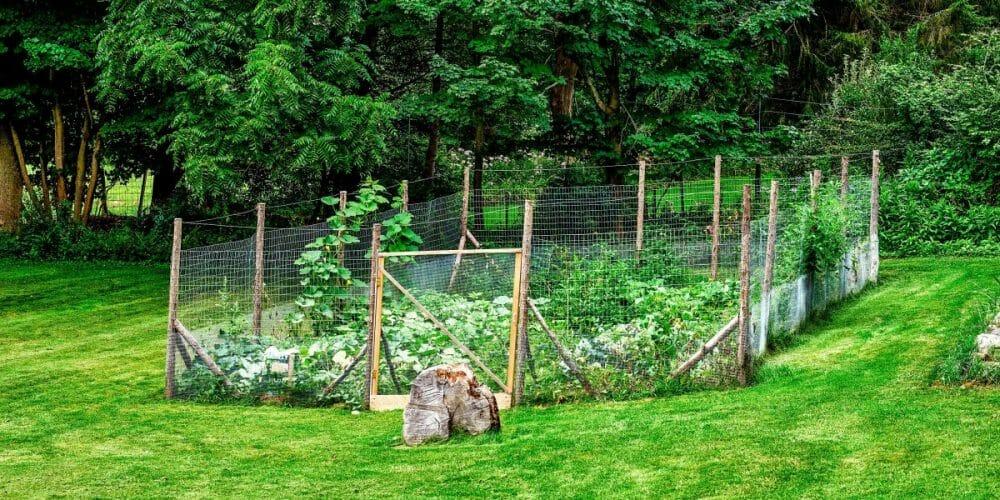 temporary vinyl fence gate plant