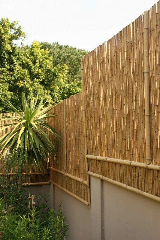 bamboo fence panels home depot