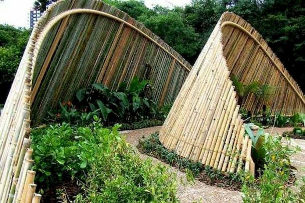 bamboo fence sydney style