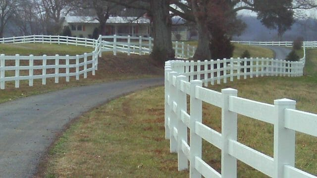 the white picket fence