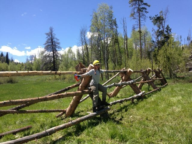 building a buck and rail fence